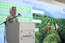 تراز بازرگانی ایران و اروپا تراز نیست