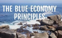 The Blue Economy  Principles